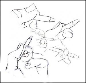 Basic Drawing Skills – Modified Contour Drawing |