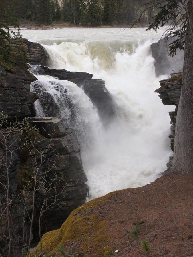 Rex Beanland, Athabaska Falls
