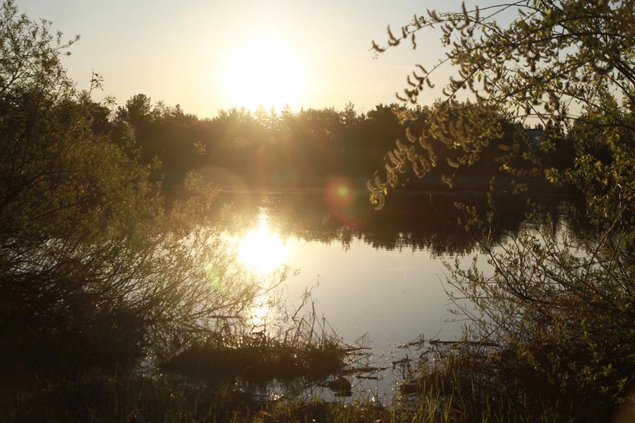 Rex Beanland, Sunrise, Grande Prairie